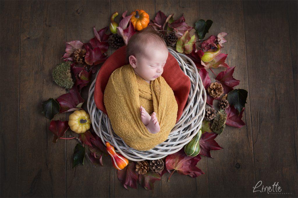 Linette Photographie - naissance Melle C